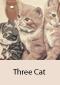 3 Cat